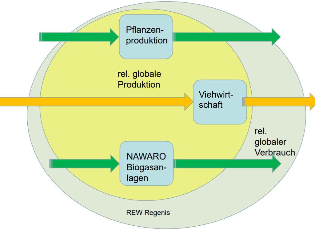 REW Regenis - Globale Stoffströme